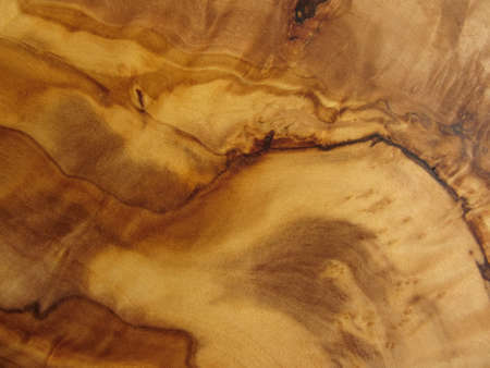 texture from an olive wood