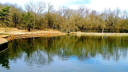 Blue Mirrored Lake Shore Stock fotó