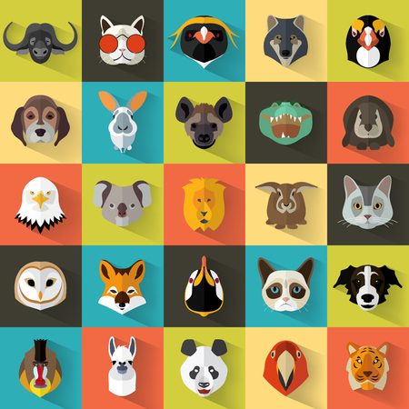 zoo animals: Animal Portrait Set with Flat Design  Vector Illustration