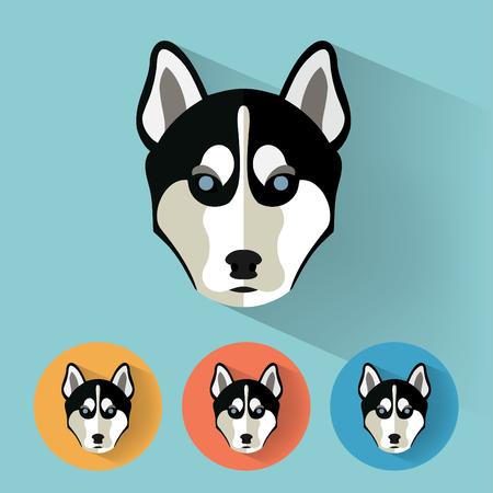 husky puppy: Animal Portrait with Flat Design  Dog  Husky  Vector Illustration