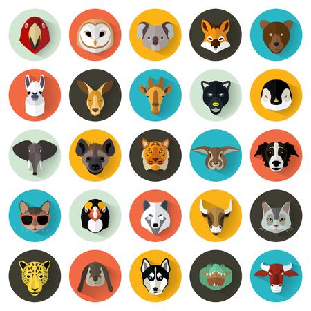 hayvanlar: Hayvan Portre Flat Design  Vektör Illustration Set