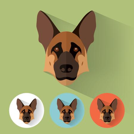 Retrato animal con diseño plano del perro / pastor / Ilustración Vector / Alemán