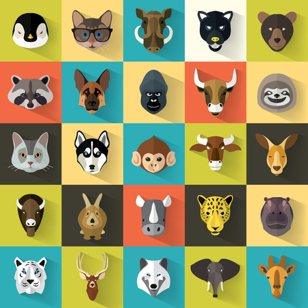wild animal: Animal Portrait Set with Flat Design  Vector Illustration