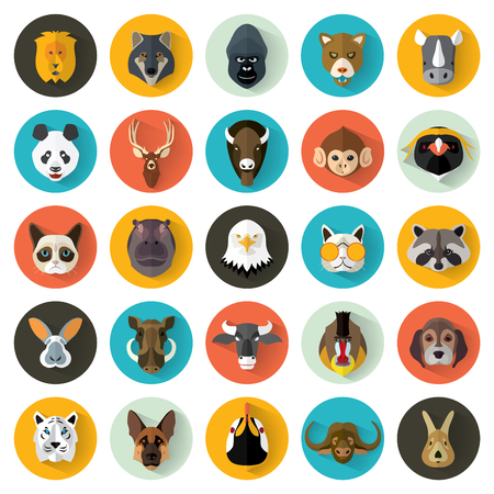 animal vector: Animal Portrait Set with Flat Design  Vector Illustration