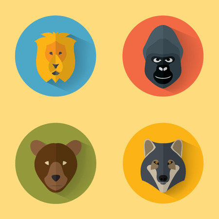 wolf face: Animal Portrait Set with Flat Design  Vector Illustration