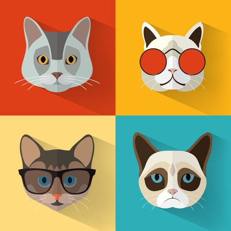 funny glasses: Animal Portrait Set with Flat Design Cat Collection  Vector Illustration