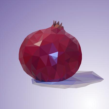 Illustration of a pomegranate on a lilac background