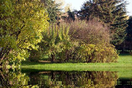 autumn, pond, leaf, nature, scene, landscape Standard-Bild