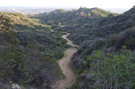Winding Griffith Park Canyon Trial Los Angeles