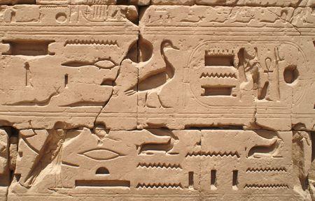 Egypt hieroglyphics in Luxor photo