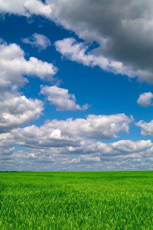 Beautiful landscape Stock Photo