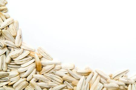 sunflower seeds, photo frame, corner photo