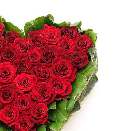 heart of roses, red roses photo