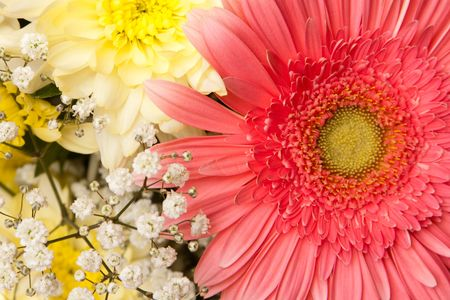 pestil: beautiful bouquet with daisy and chrysanthemum Stock Photo