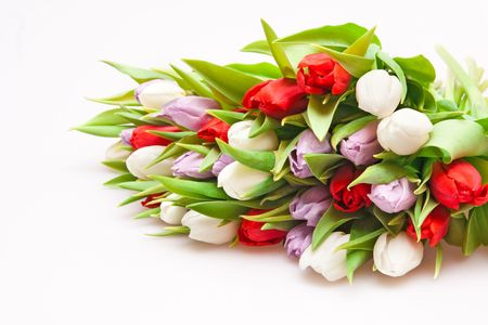 beautiful bouquet of tulips isolated on white Stock Photo - 6712600