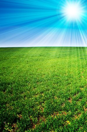 sunrays: beautiful landscape, green grass, blue sky