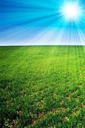 beautiful landscape, green grass, blue sky photo
