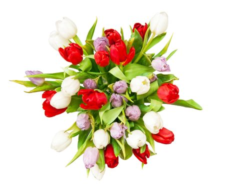 bouquet of beautiful tulips on white Stock Photo - 6759249
