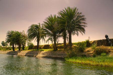 the boat on the river: R�o en Egipto, Nilo en �frica