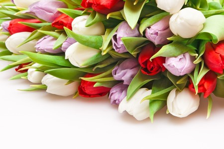 beautiful bouquet of tulips isolated on white Stock Photo - 6933514