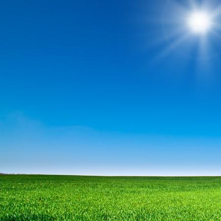 sunspot: beautiful landscape, green grass, blue sky