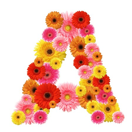 A, flower alphabet isolated on photo
