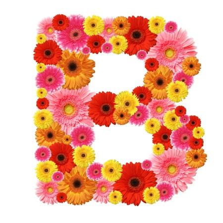 b: B, flower alphabet isolated on white