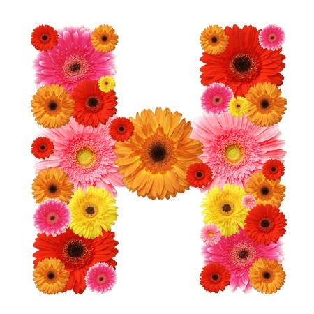H, flower alphabet isolated on white photo