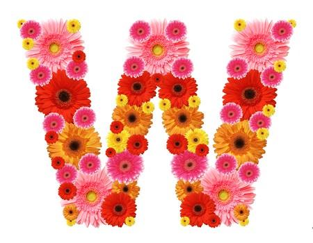 W, flower alphabet isolated on white photo