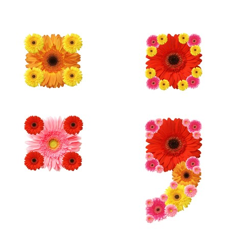 in full bloom: abc, signs, punctuation marks