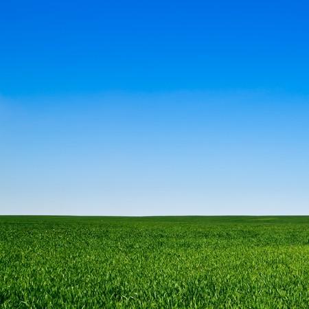blue sky background: beautiful landscape, clean blue sky