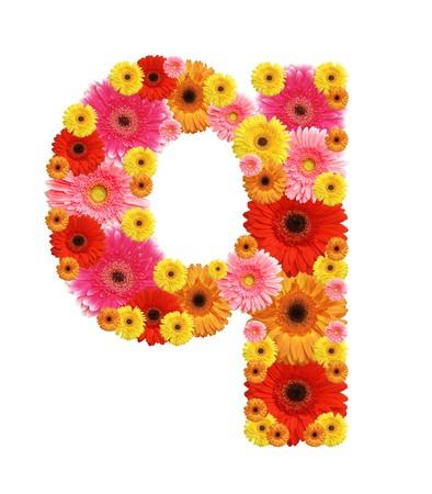 flower alphabet, q, lower case character photo