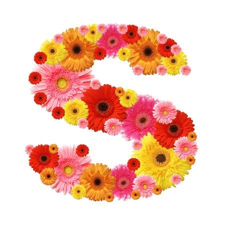 alphabet s: alfabeto de flor, s, personaje de min�sculas  Foto de archivo