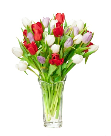 tulips isolated on white Stock Photo - 8700057