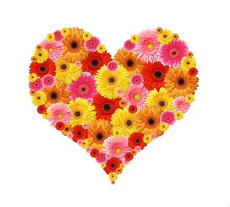 flower heart isolated on white