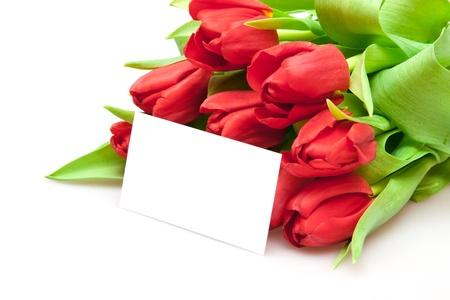Blumenstrauß aus red Tulips isolated on white Standard-Bild - 8835770