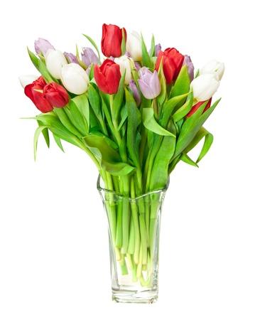 mazzo di fiori: tulipani isolati on white Archivio Fotografico