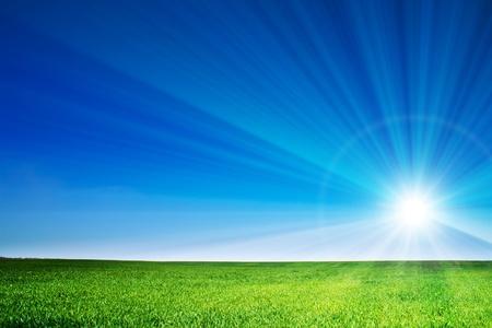 schöne Landschaft, grünes Gras, blauer Himmel