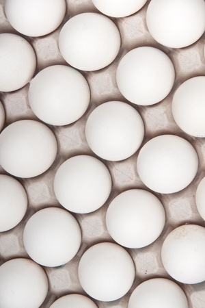 white eggs, background photo