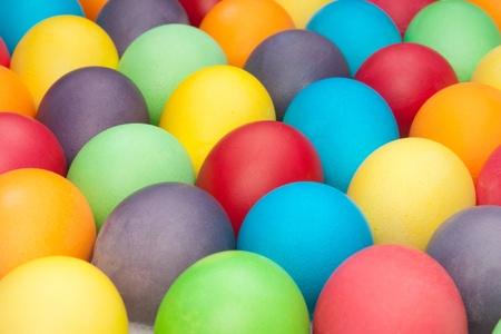 multi color eggs  photo