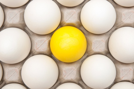white eggs with one gold egg photo