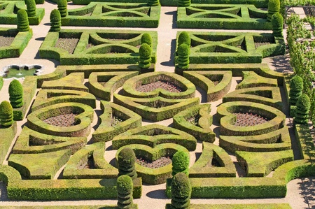 Garden in Villandry, France photo