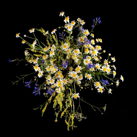 bouquet isolated on black Stock Photo - 9218928