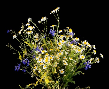 bouquet isolated on black Stock Photo - 9460172
