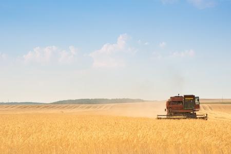 grain harvester combine work in field Stok Fotoğraf - 9977863