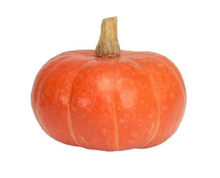 orange pumpkin isolated on white photo