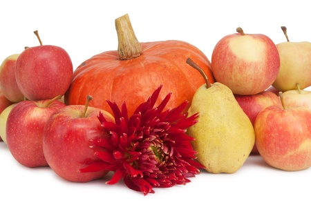 pumpkin, apples and pear and dahlia isolated on white photo