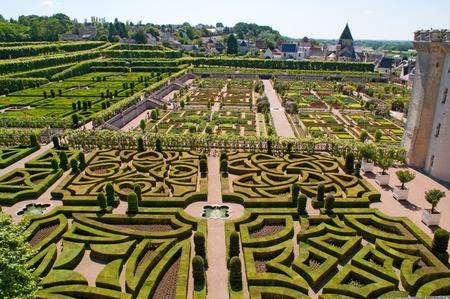 Garden in Villandry, France photo