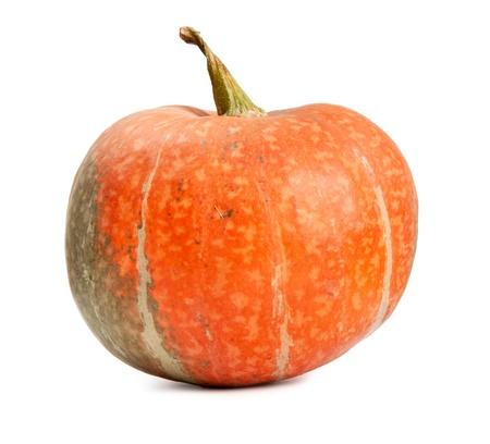 cucurbit: orange ripe pumpkin isolated on white