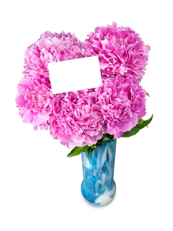 peonies in vase isolated on white  photo